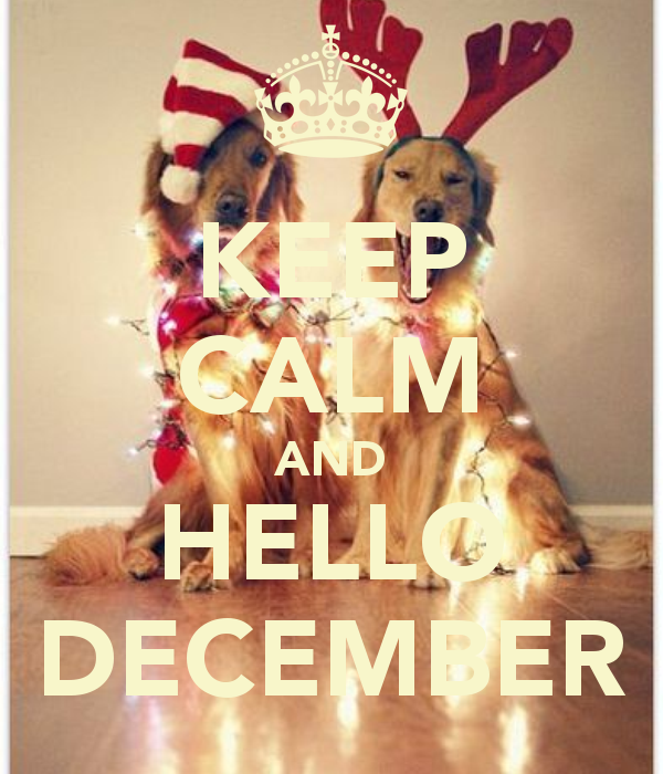 keep-calm-and-hello-december-14